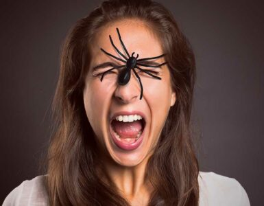 Scared woman with a spider on her face